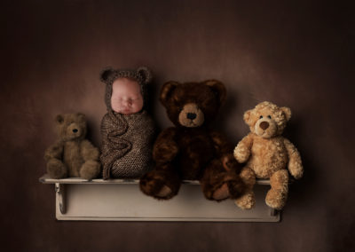 bear-on-shelf-insert-download